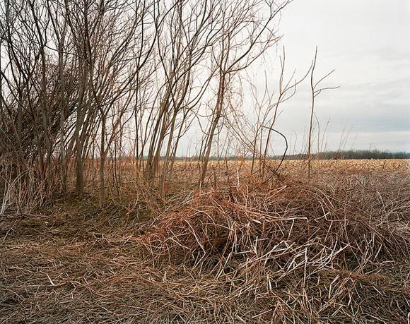 Современный пейзаж. Зачем фотографы снимают природу некрасиво и в чём здесь искусство?